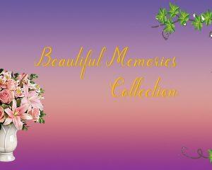 Beautiful Memories Collection