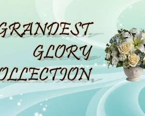 Grandest Glory Collection